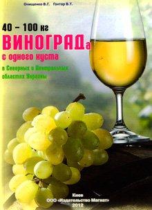 40-100 кг винограда с одного куста