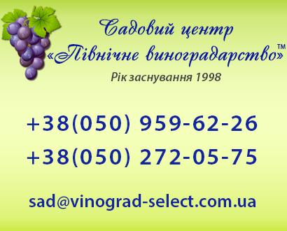 интернет магазин ред киев